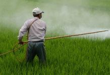 Attenzione: I soldi pubblici in agricoltura sostengono l'uso dei pesticidi.