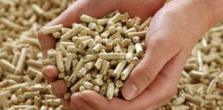 Biocombustibili, anche il pellet deve essere di qualità