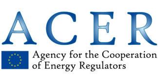 Energia: commissario Arera Clara Poletti eletta alla presidenza Agenzia Acer.